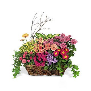 A Chorus of Flowers Basket